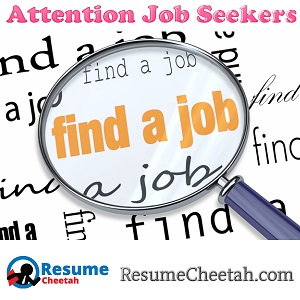 Resume Cheetah: Can it be used with LinkedIn to find a job?